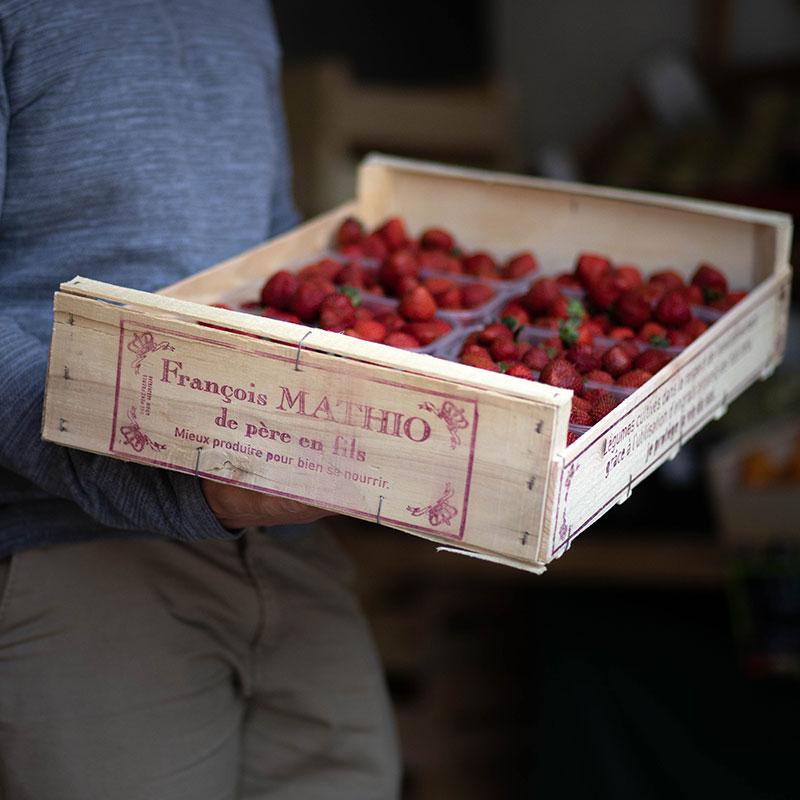 fraise-landes-02