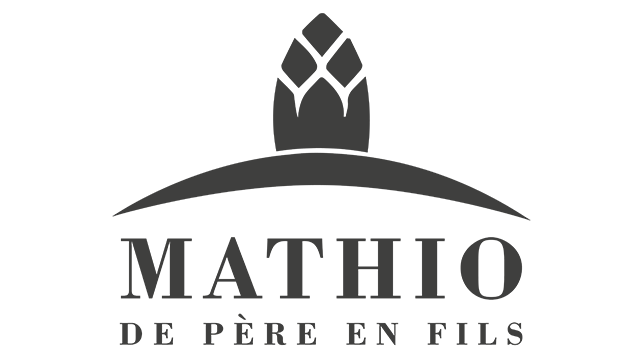 logo-mathio-home-2