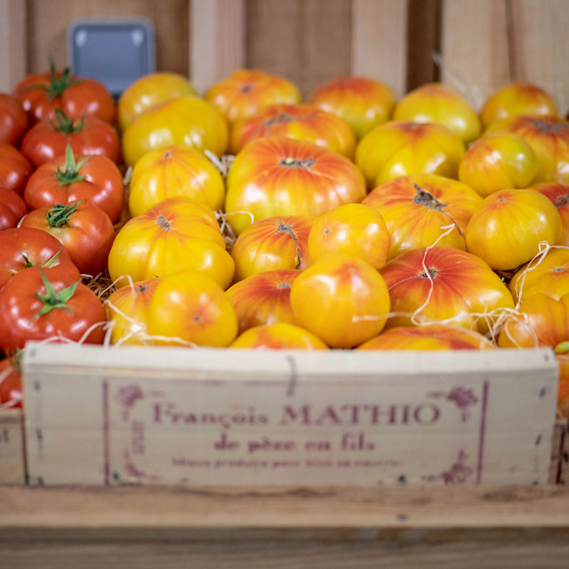 magasin-tomate-03