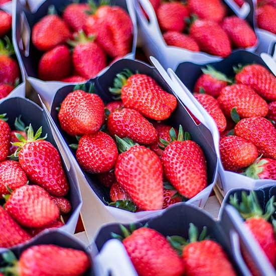 fraise-23