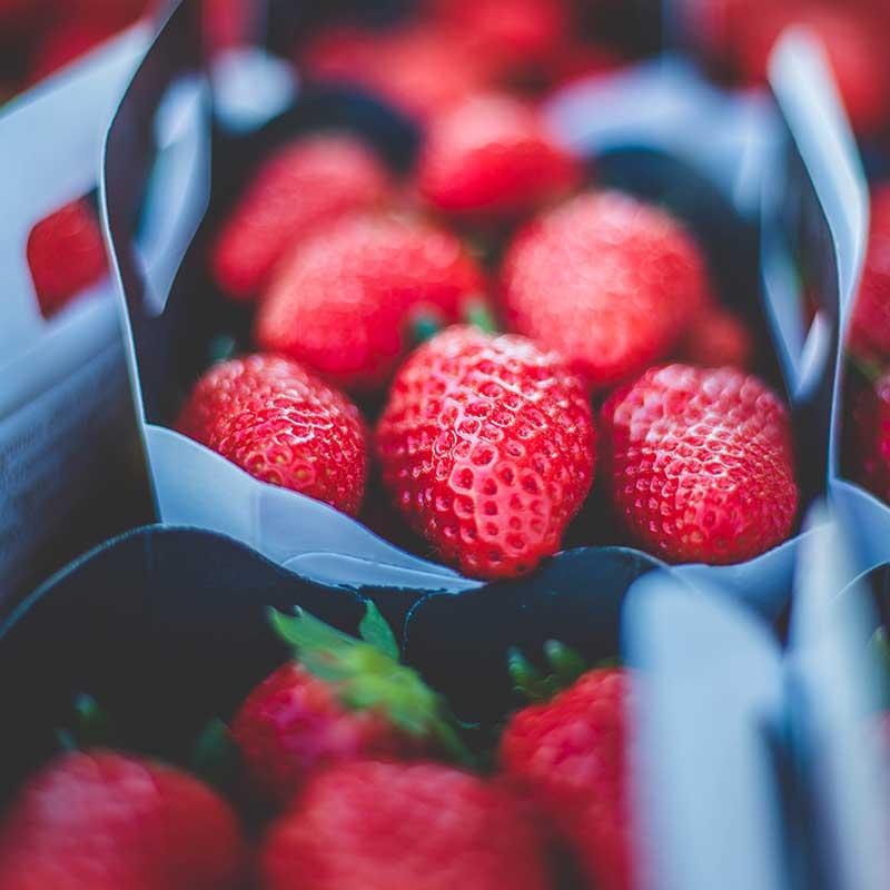 fraise-48
